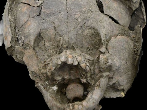 Infant skeletons wearing 'helmets' of other children's skulls may have been a sad farewell