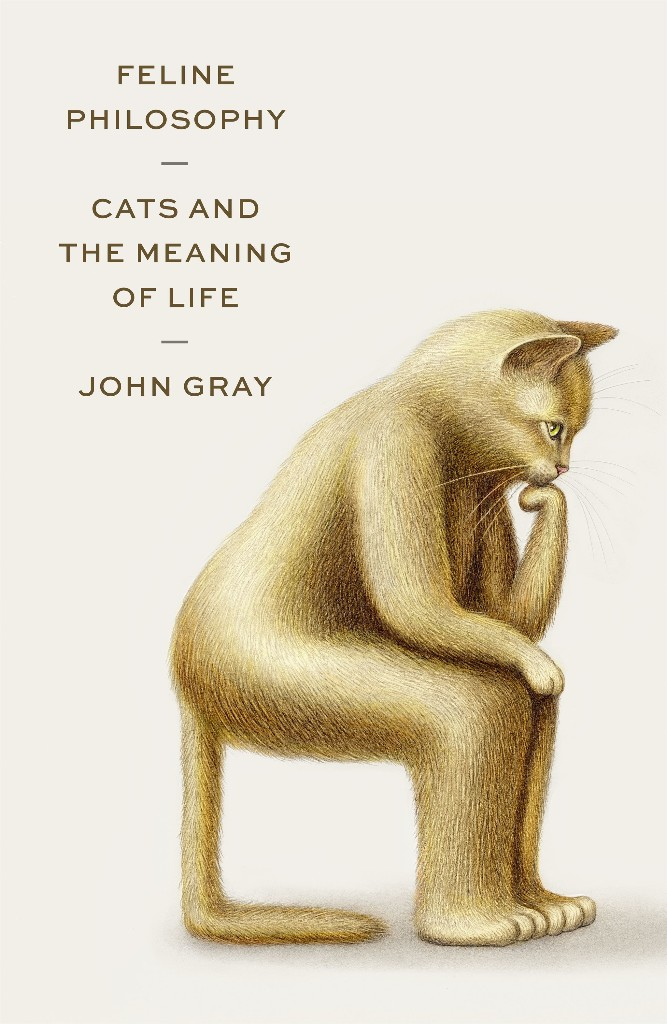 We've been looking to philosophers to make sense of life. Maybe we should be looking at cats instead.
