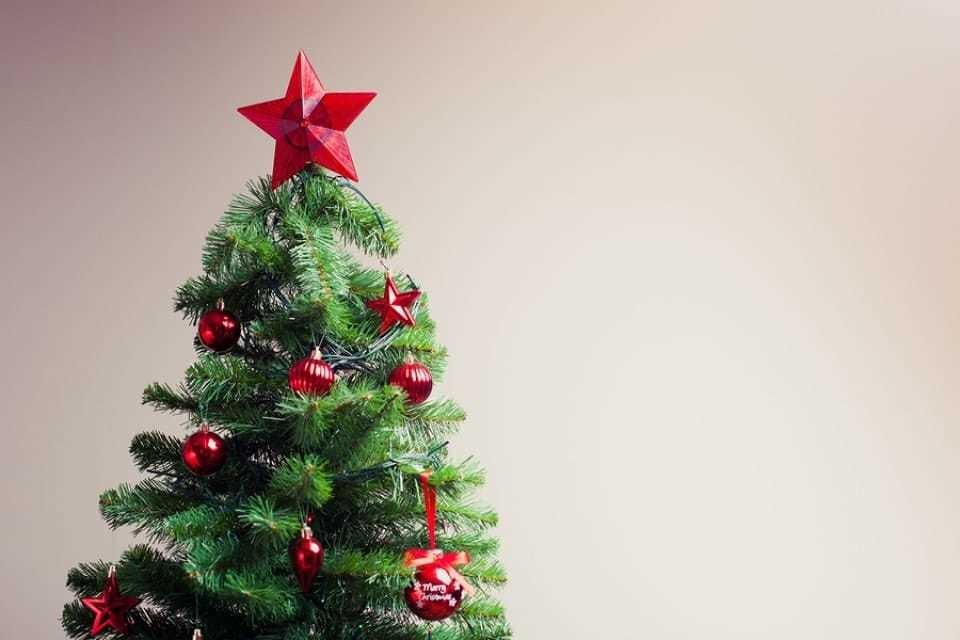 Mystery of the spike in deaths between Christmas and New Year's gets curiouser and curiouser