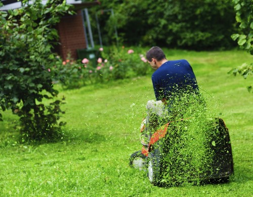 Here are nine common lawn-care mistakes to avoid