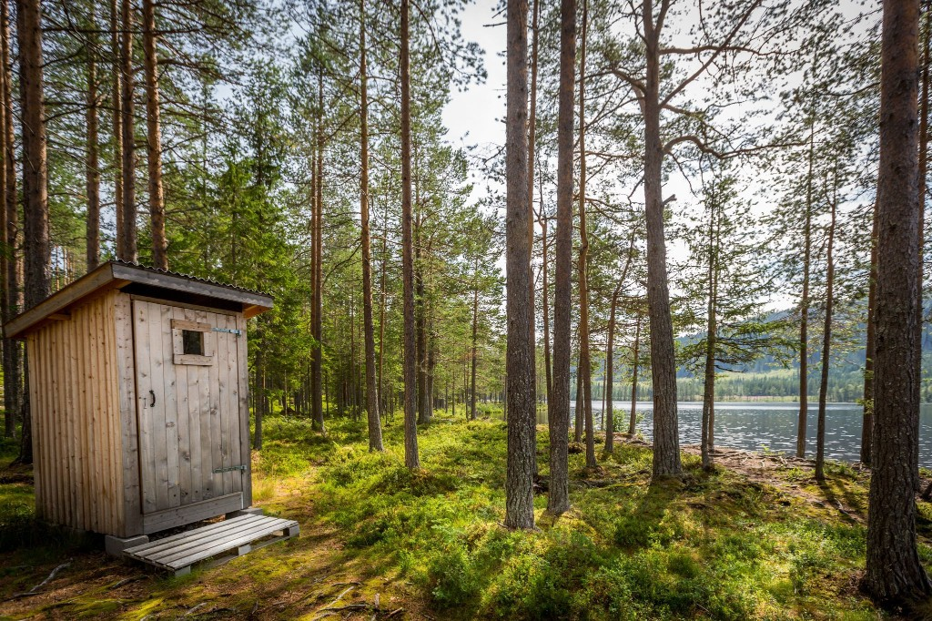 Camping or hosteling during the pandemic? Here's how to scout out your best bathroom options.