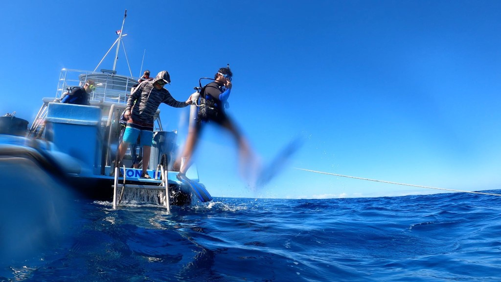 How the scuba community is navigating the pandemic's uncharted waters