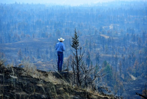Massive wildfires turned prairies to ash, leading Montana's cowboys to weigh federal help