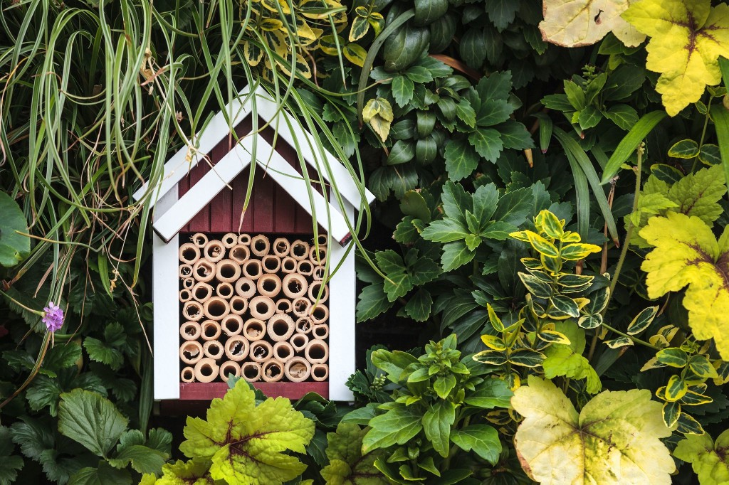 A quarantine project that's a win for you, your garden and pollinators: A bee house