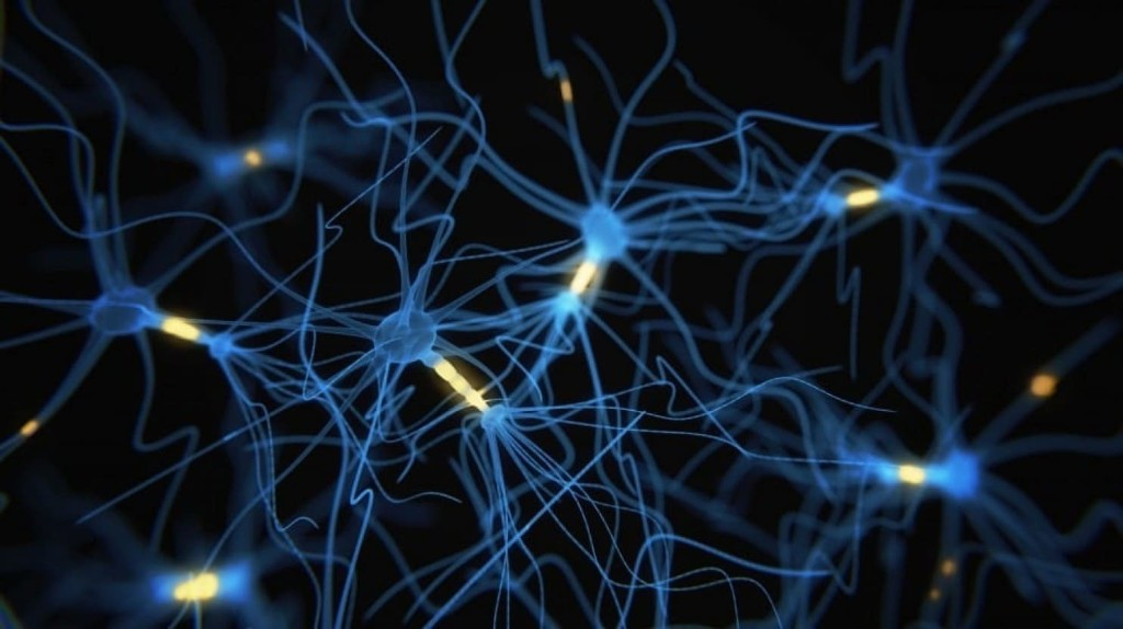 Five major psychiatric diseases have overlapping patterns of genetic activity, new study shows