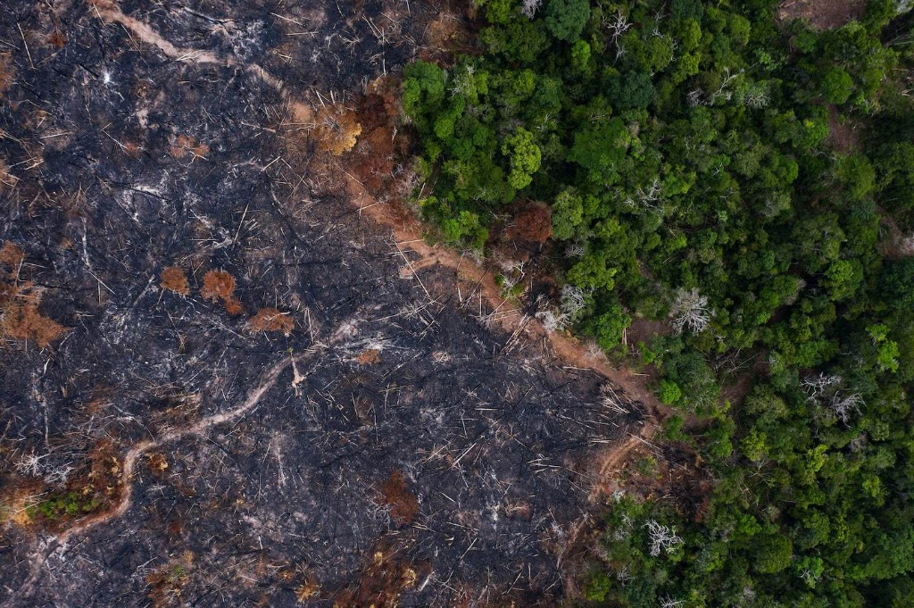 Top scientists warn of an Amazon 'tipping point'