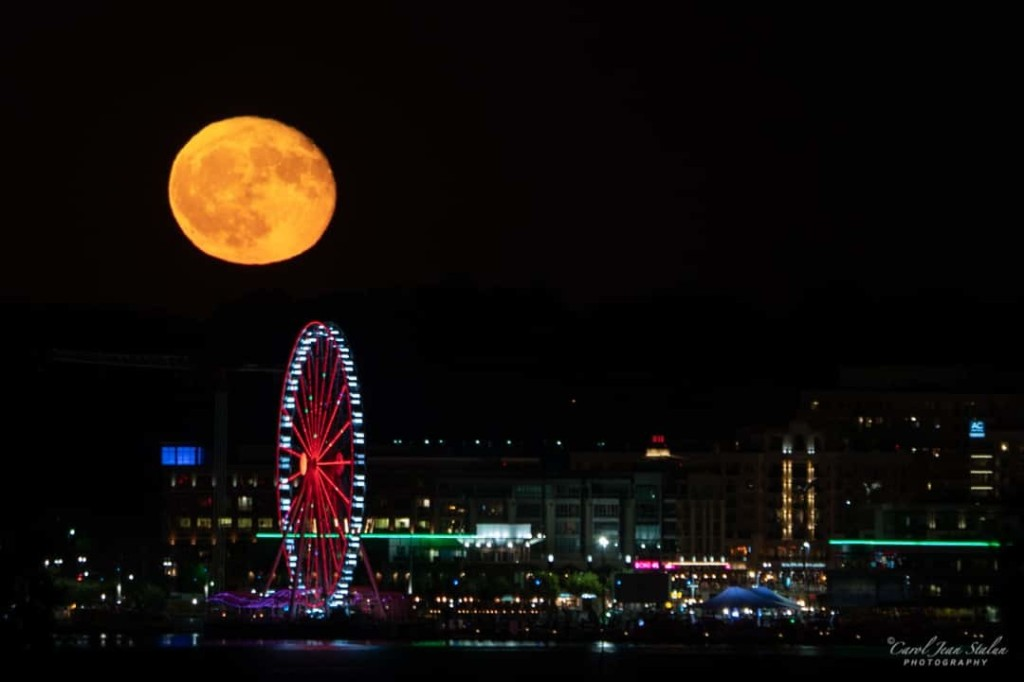 Fall night sky to offer wondrous celestial sights from Halloween 'blue moon' to dazzling meteor showers