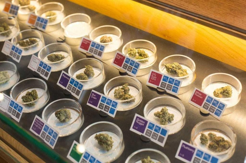 11 charts that show marijuana has truly gone mainstream