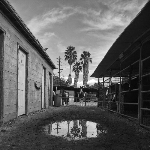 Scenes from Los Angeles's equestrian oasis, nestled within the suburban sprawl