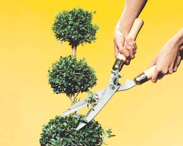 Etc - Magazine cover