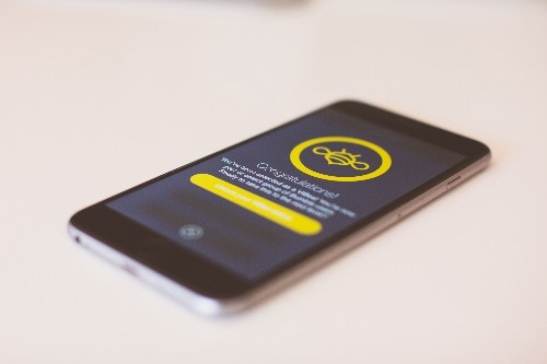 Bumble Introduces VIBee, A Verification Feature Independent Of Your Social Status