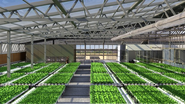 BrightFarms Reaps $4.9M Series B To Expand Its Urban Greenhouse Network