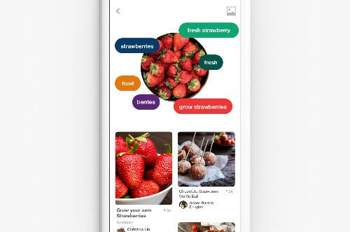 Pinterest adds visual search for elements in images and through your camera