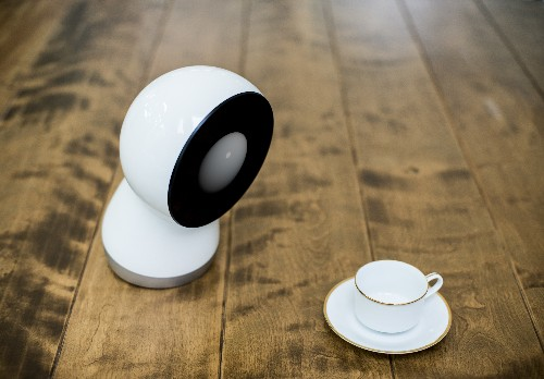Hands On With Jibo, The Family Robot