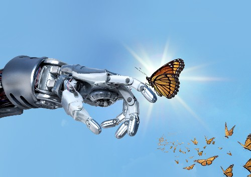 Why nature is our best guide for understanding artificial intelligence