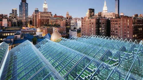 Edenworks Is Building The Future Of Food On Urban Rooftops