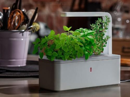 """Click & Grow Turns To Kickstarter To Seed Its 2nd Gen """"Smart Herb Garden"""""""