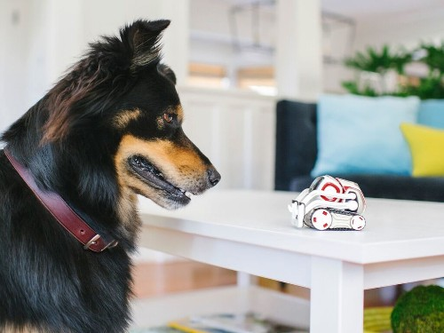 Cozmo can now recognize pets and see in the dark