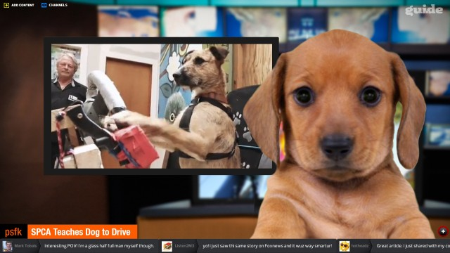 仮想ニュースキャスターを使ってテレビ風ニュース配信を行うGuide、100万ドルの資金を調達
