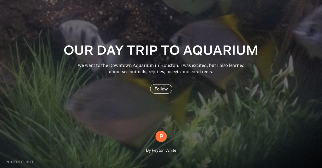 DayTrip_to_the_Aquarium